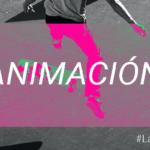 animacion-post-blog